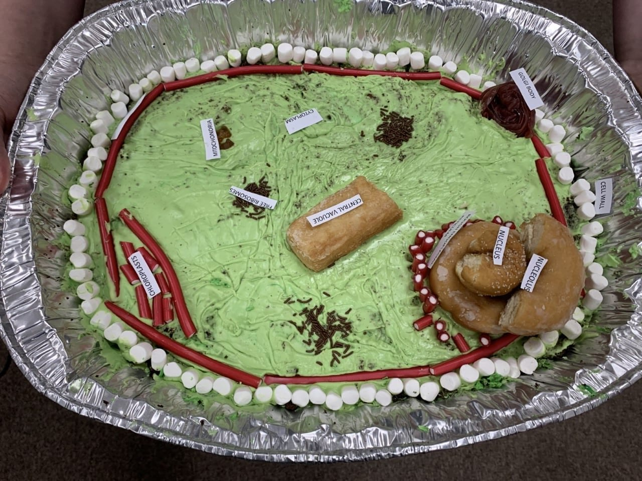Cell Structures Represented in Cake